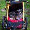 trailer/stroller Burley Tail Wagon